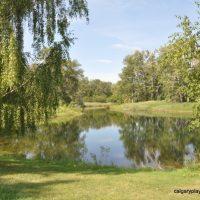 Carburn Park