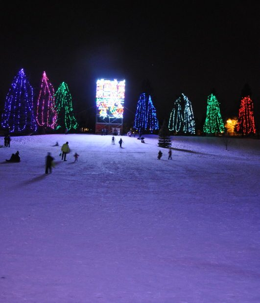Christmas Light Displays In Calgary