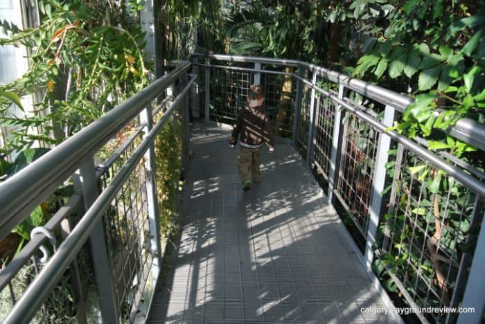 Botanic Gardens 10