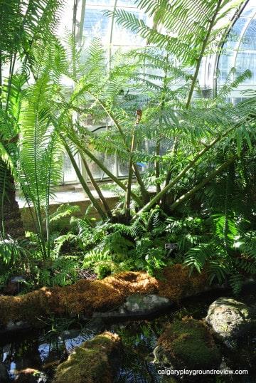 Botanic Gardens Washington, DC
