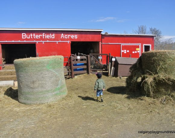 Butterfield Acres