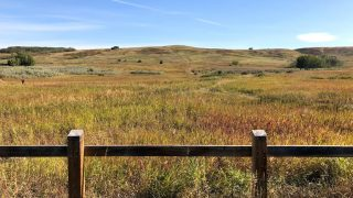 Exploring Nose Hill Park with kids