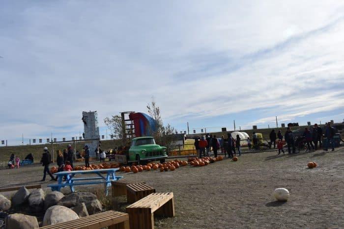 View of Premium activities at Cobb's Adventure Park