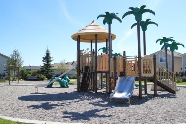 Cranston Palm Tree Park