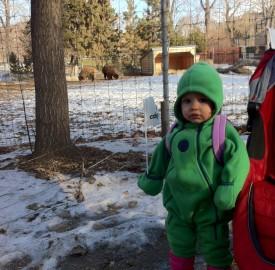Calgary Zoo - Fully Reopened