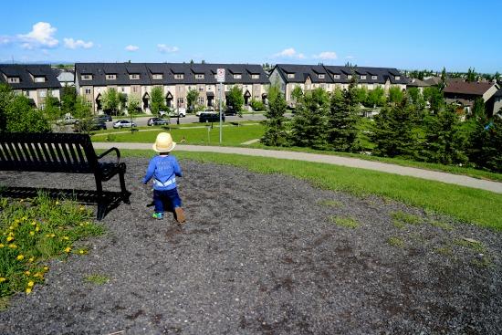 Elgin Ruins Park