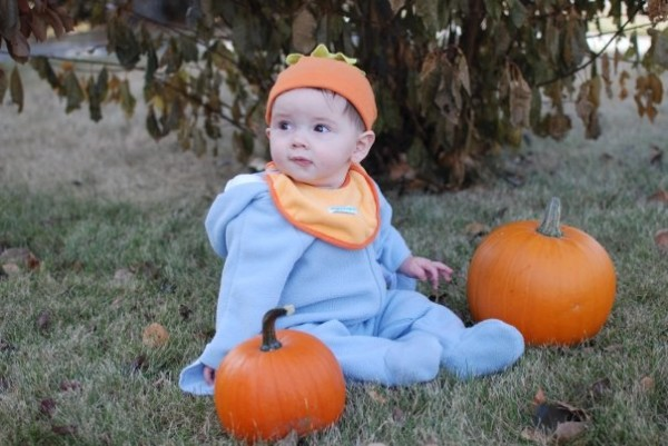 Pumpkin Patches, Corn Mazes and Harvest Festival Fall Fun -2014