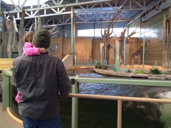 African Savannah - Calgary Zoo - Zoo in Winter - Calgaryplaygroundreview.com