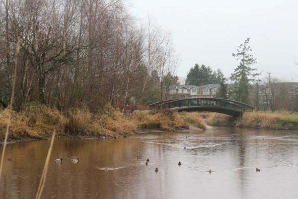 Garden City Community Park and Arboretum - Richmond, BC