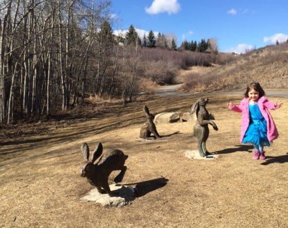Edgepark Ravine – Edgemont Rabbits and Playground