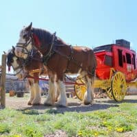 Fort Whoop Up - #albertastaycation - calgaryplaygroundreview.com