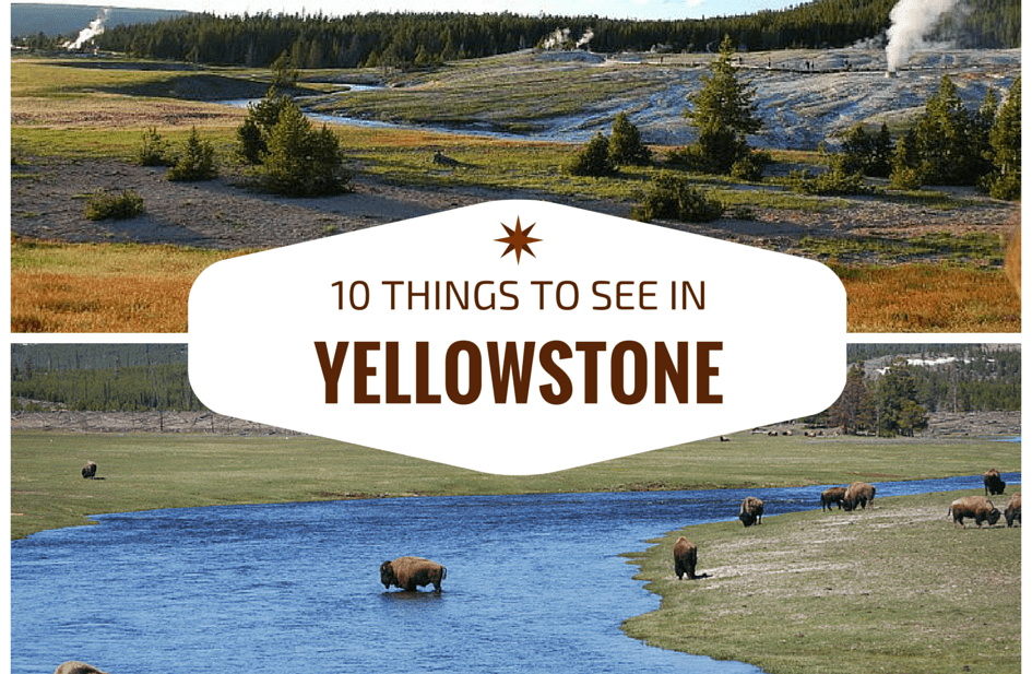 10 Things You Won't Want to Miss in Yellowstone National Park
