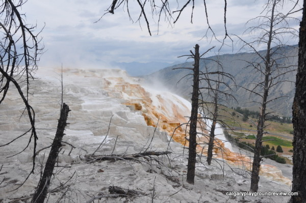 Mammoth Terraces - Yellowstone National Park