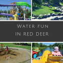 Red Deer Water Fun
