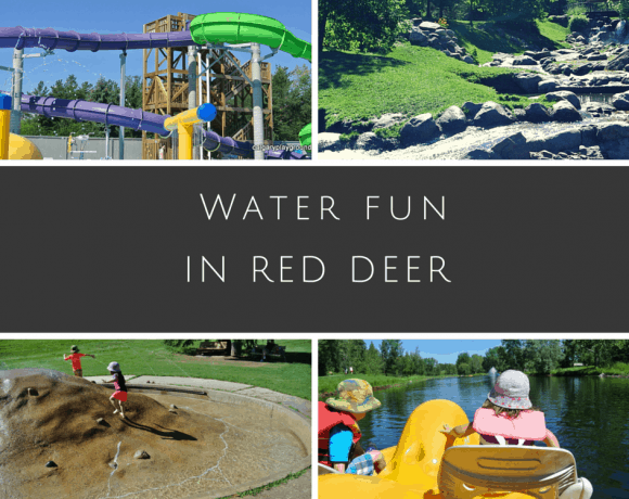 Red Deer Water Fun