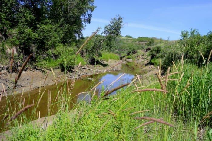 How We Had a Super Fun Vacation in Saskatoon - Beaver Creek