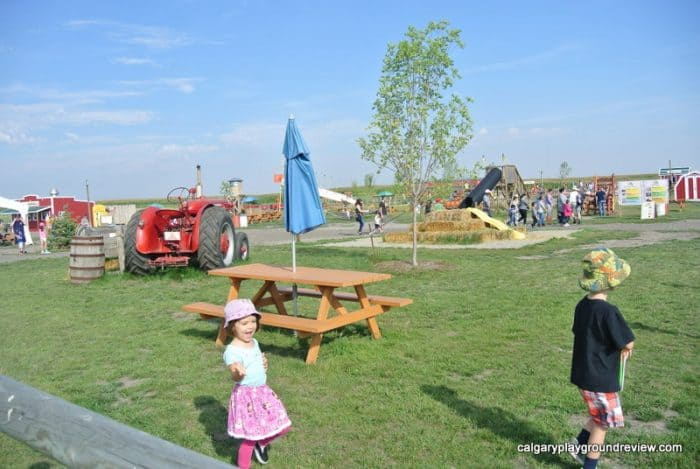 View of some of the activities at the Calgary Farmyard