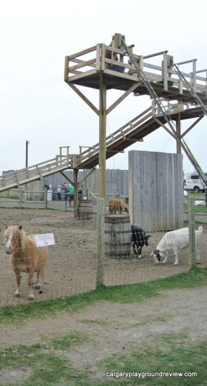 Petting zoo at the Calgary Farmyard