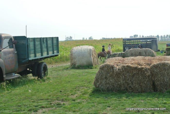 Pony rides at the Calgary Farmyard
