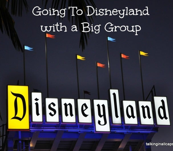 6 Tips for Going to Disneyland with a Big Group