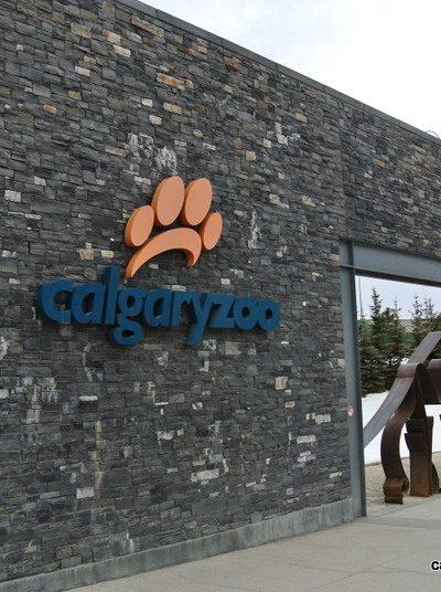 Visiting the Calgary Zoo