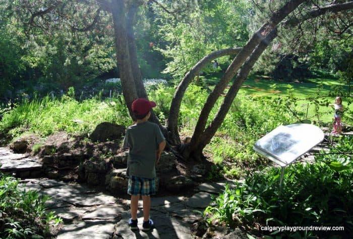 Reader Rock Garden