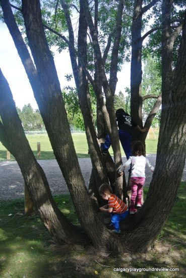 Birchwood Park Natural Playground - High River