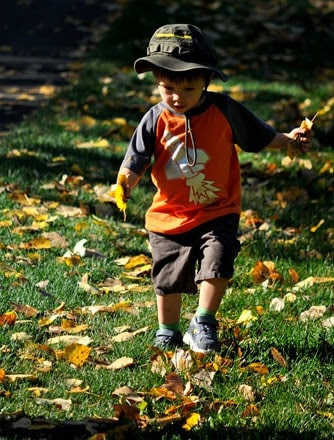 boy running in the leaves - Calgary Parks with Great Fall Leaves