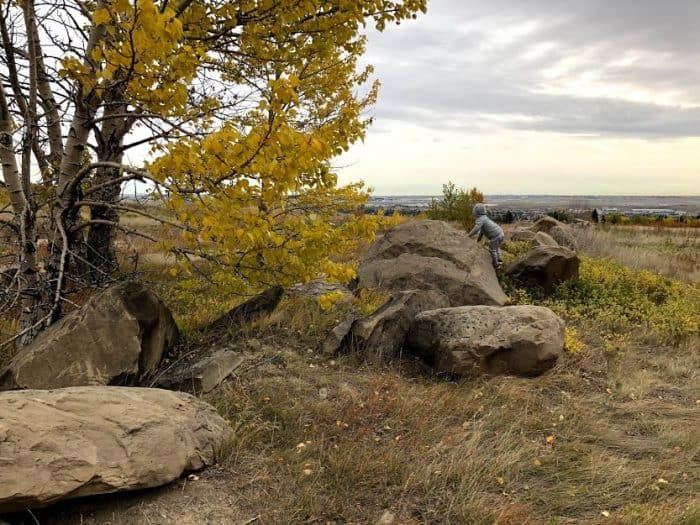 Nose Hill Park in the fall - Calgary Parks with Great Fall Leaves