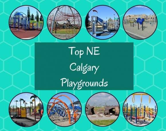 top NE Calgary Playgrounds