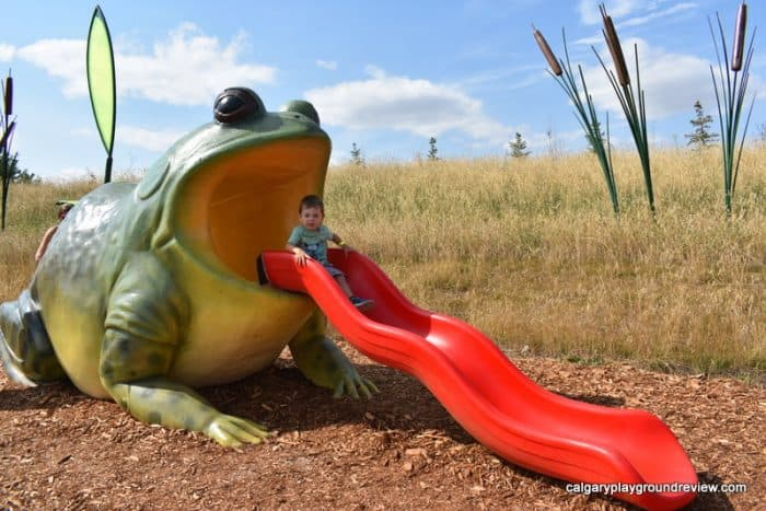 Frog shaped climber with slide