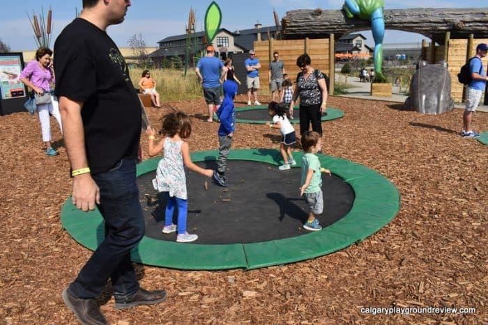 in ground trampolines