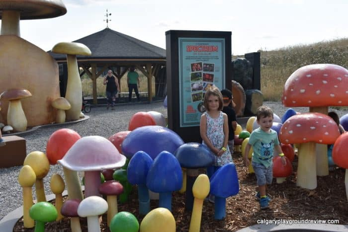 Large colourful mushrooms