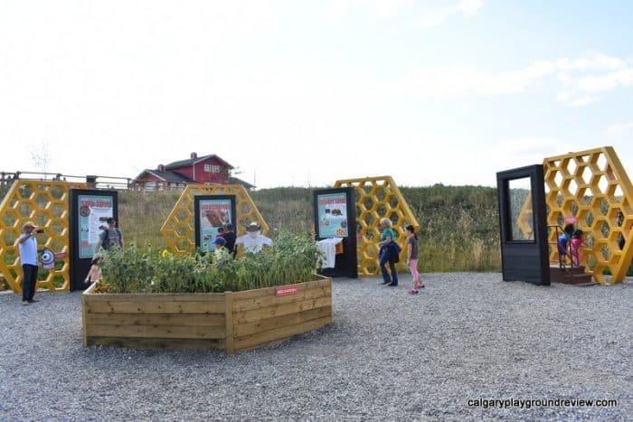 Granary Road - Bee display
