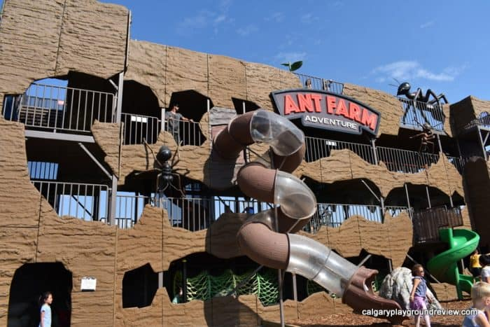 Giant ant farm climber