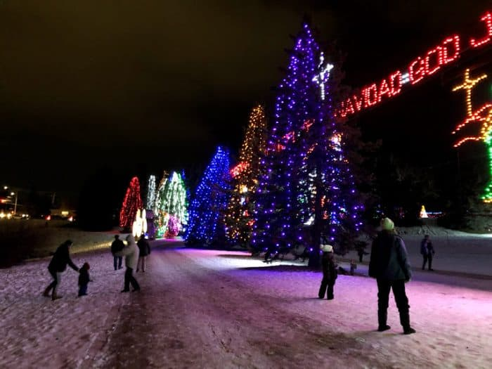 Giant trees at Lions Festival of Lights- Calgary Christmas Light Displays