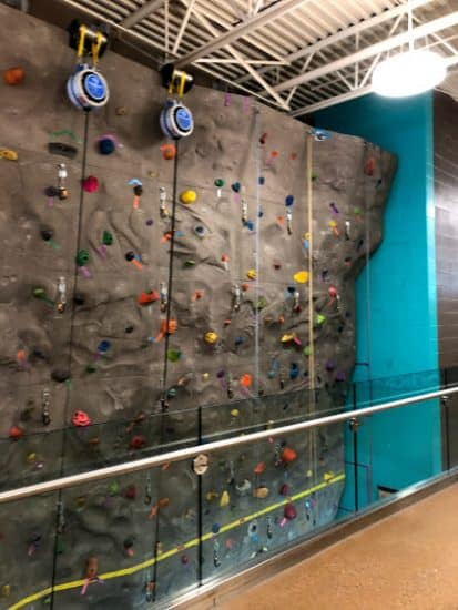Climbing wall - Vivo