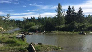 Fish Creek Park - Fish Creek Provincial Park