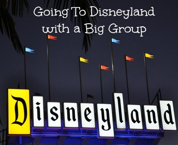 Going to Disneyland with a Big Group
